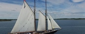 Iconic Bluenose II Embarks on Sail Past Summer